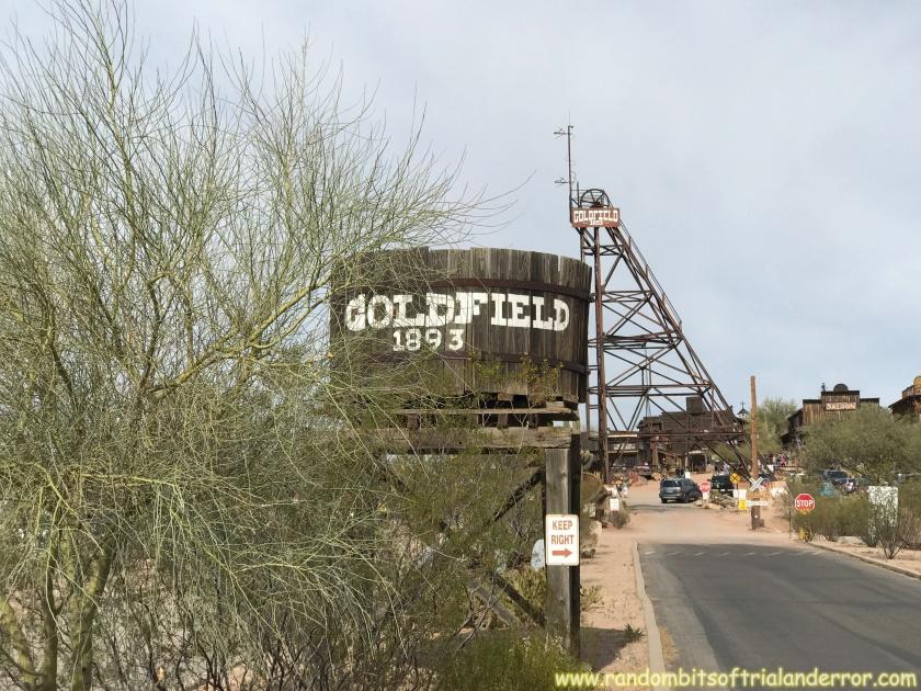 goldfield_009